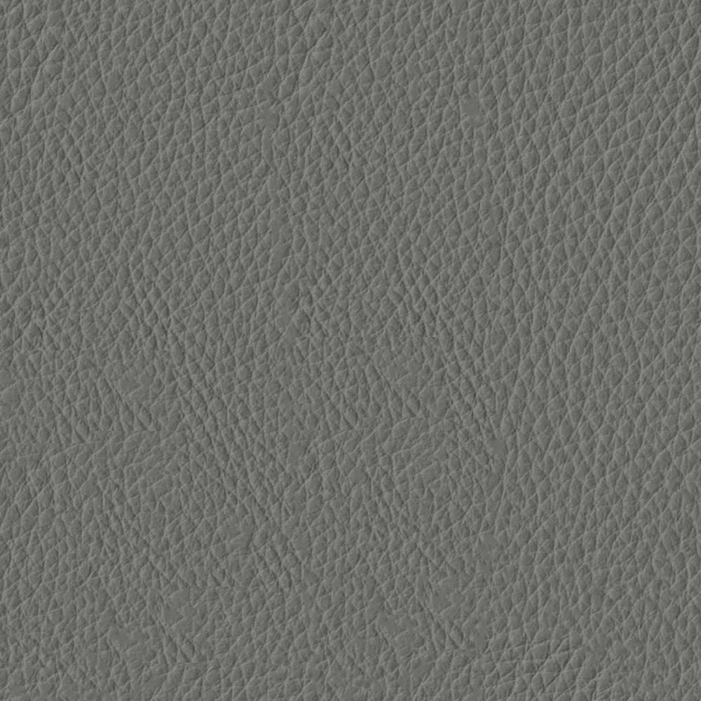 Steel Premier Leather